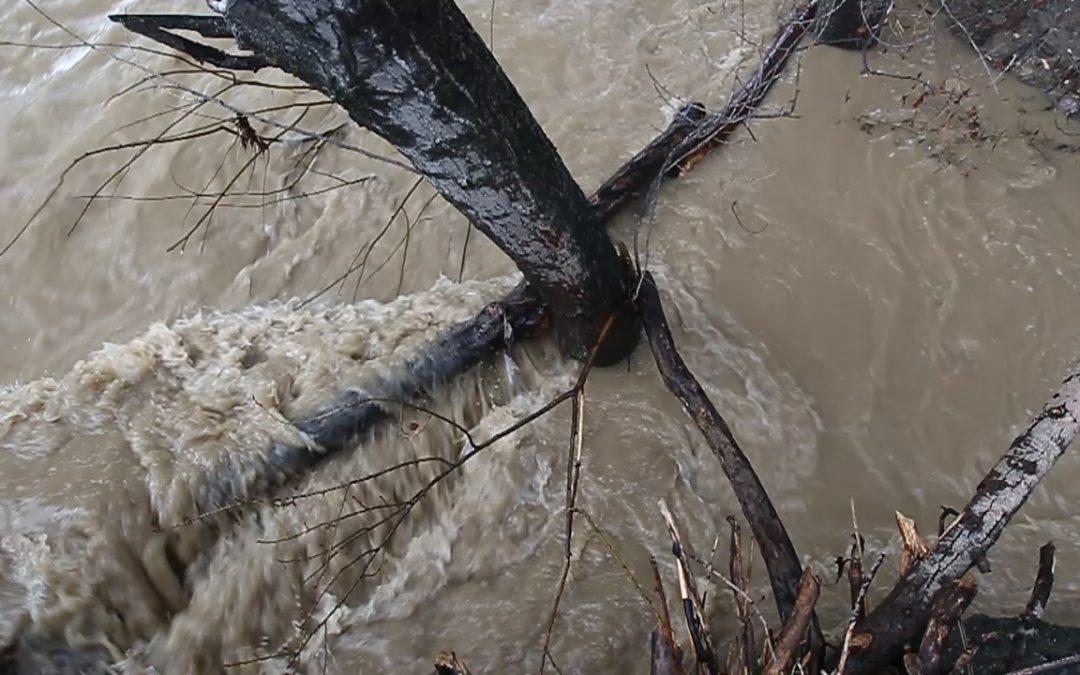 Maltempo anche sulla città I fiumi di Potenza si ingrossano