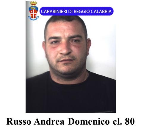 Scacco al clan dei Paviglianiti, 52 arresti nel Reggino  le foto degli arrestati dai Carabinieri