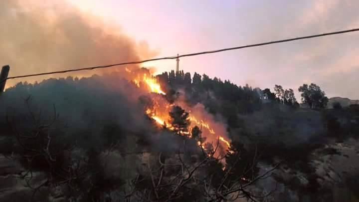 Operaio del consorzio di bonifica precipita in una scarpata e muore in un incendio nel Catanzarese