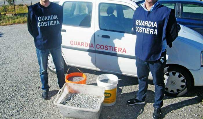 Quattro quintali di prodotti itticisequestrati nel porto di Reggio