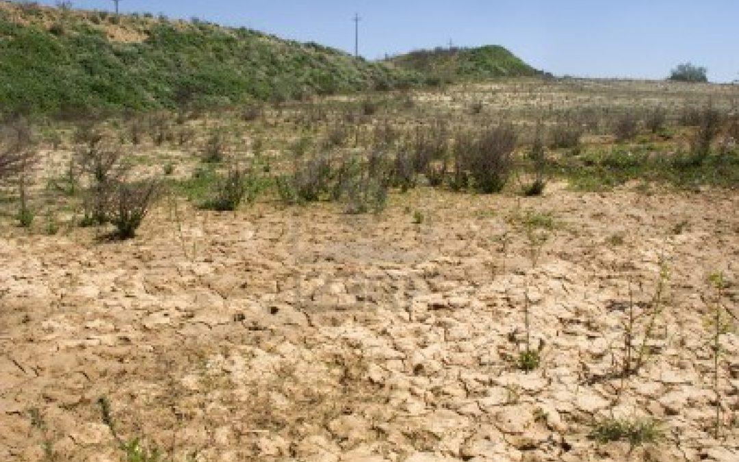 Un terreno interessato dalla siccità