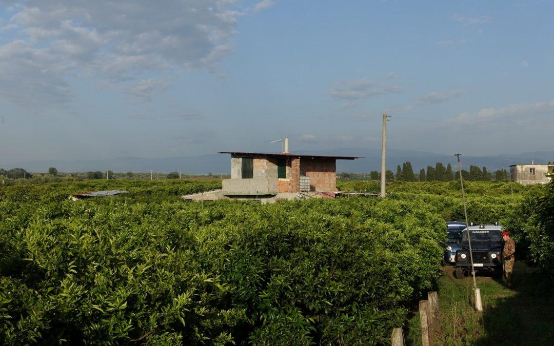 FOTO – Il viaggio dentro i misteri dell'Aspromonte  Le immagini dei bunker e dei boschi nelle montagne calabresi