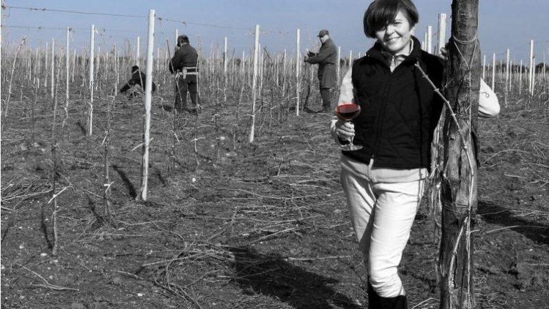 Cantine aperte, quando il vino crea turismo«L'Aglianico può trainare un intero territorio»