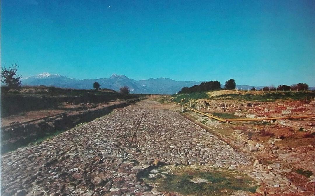 Pioggia di investimenti per rilanciare la cultura  In Calabria fondi per musei e parchi archeologici