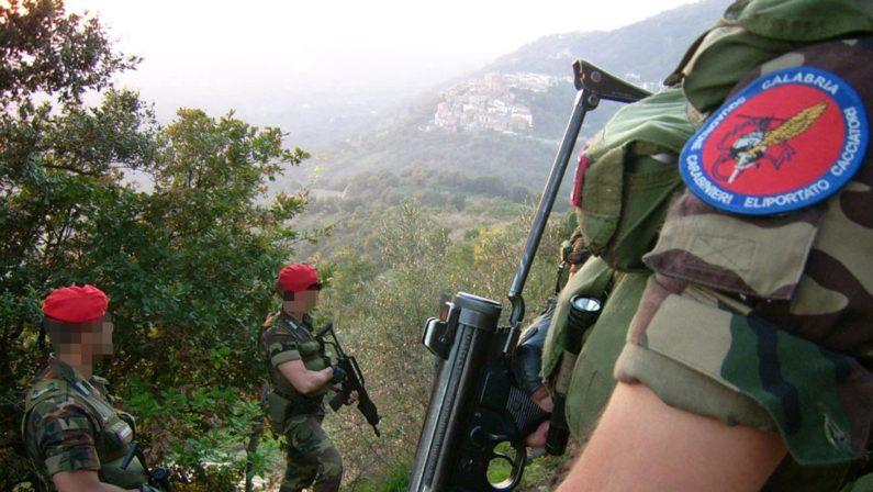 Armi e munizioni sequestrate nel Vibonese, ritrovato un fucile rubato a Pavia dieci anni fa