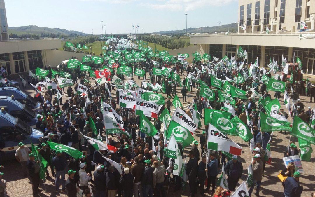 La rivolta degli agricoltori, in 2.000 a Catanzaro per pagamenti arretrati e più attenzioni al comparto