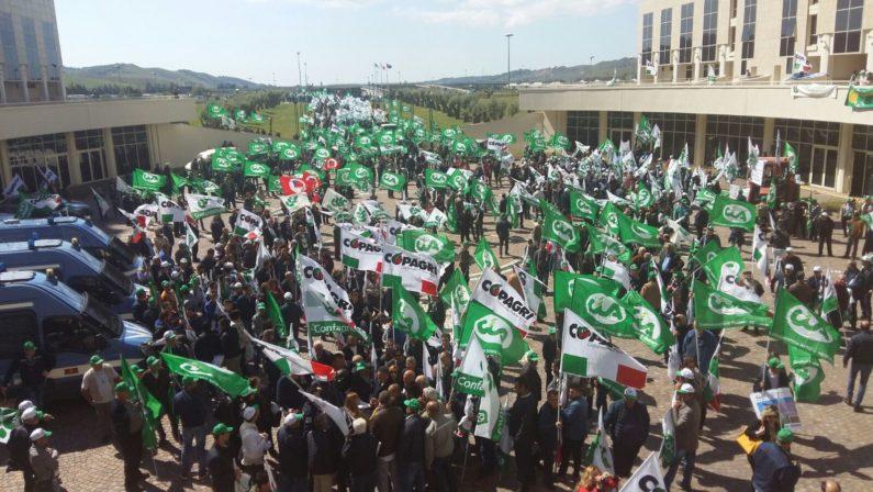 La rivolta degli agricoltori, in 2.000 a Catanzaroper pagamenti arretrati e più attenzioni al comparto