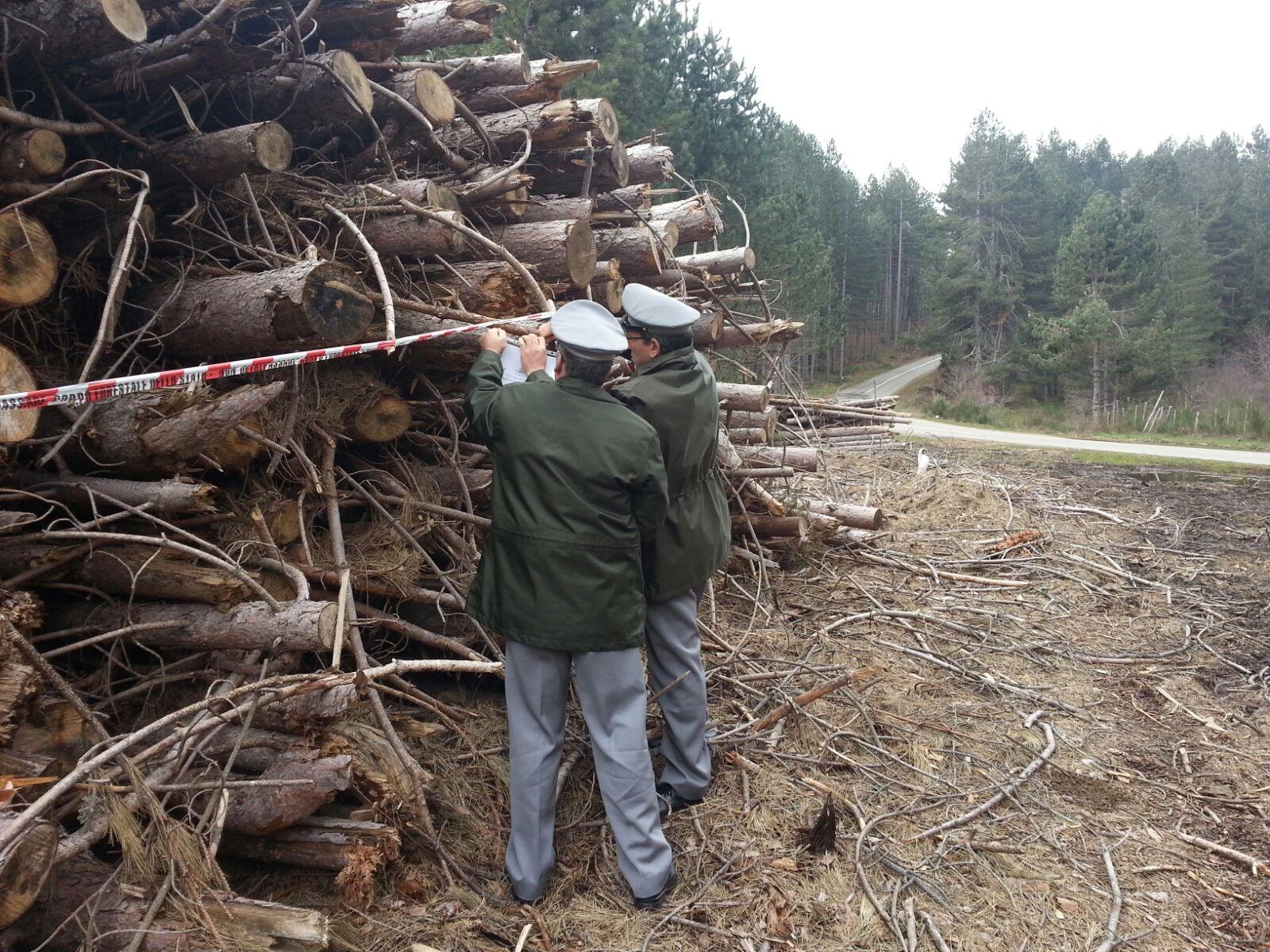 Alta Irpinia, il Corpo Forestale dello Stato ferma la realizzazione di un parco eolico