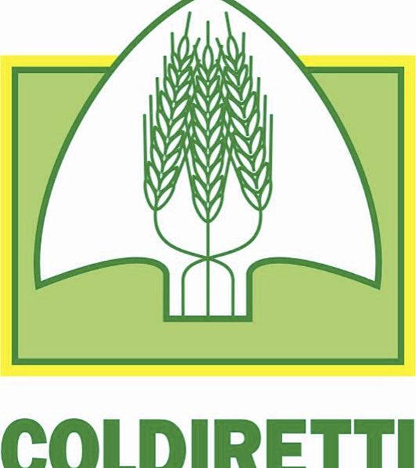 """Coldiretti: """"In Campania il monitoraggio di cibo tra i più estesi"""""""