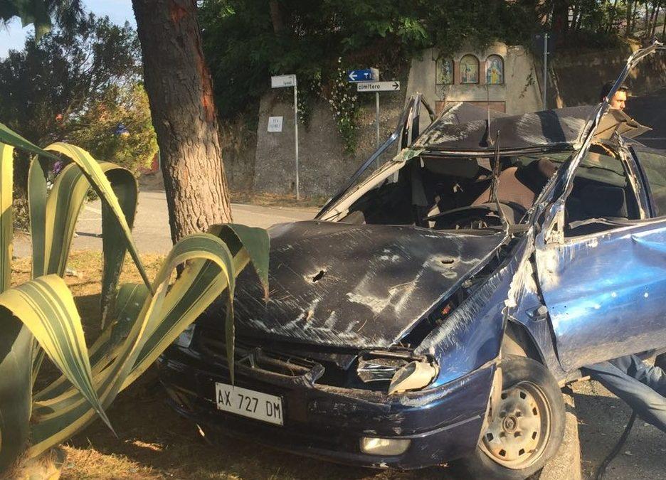 Perde il controllo dell'auto nel Catanzarese e finisce contro un albero, morto un uomo