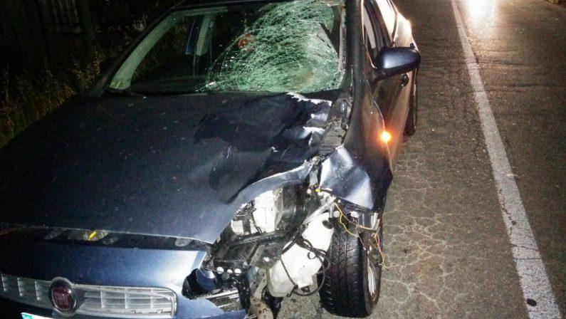 Donna investita nella notte a Rende da un'auto: è morta sul colpo, indagano i carabinieri