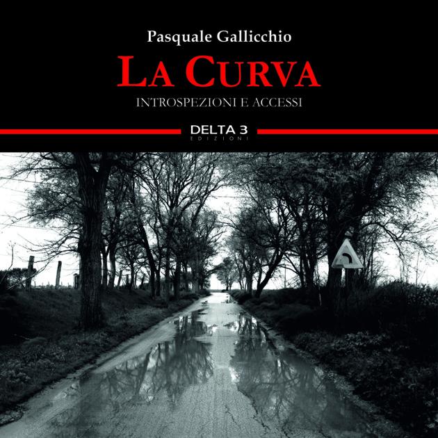"""""""La Curva"""", Gallicchio presenta in Irpinia l'ultima fatica letteraria"""