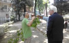 Avellino: dopo le polemiche, la Villa Comunale riapre fresca di interventi