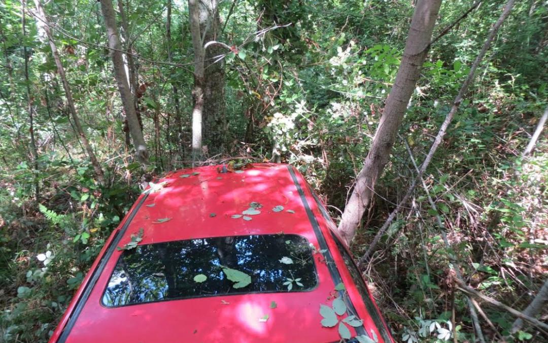 Madre e figlia precipitano con l'auto in un burrone nel Catanzarese: recuperate dai carabinieri