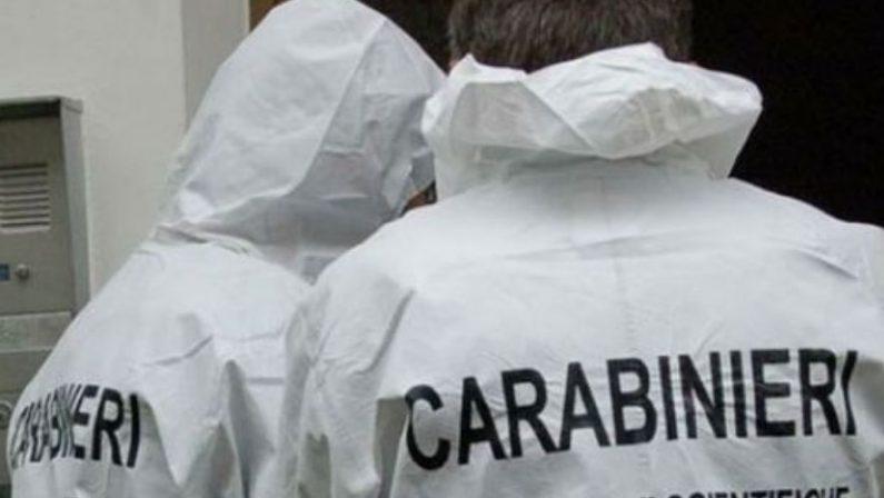 Giallo a Rosarno, 22enne ivoriano trovato morto in un agrumeto