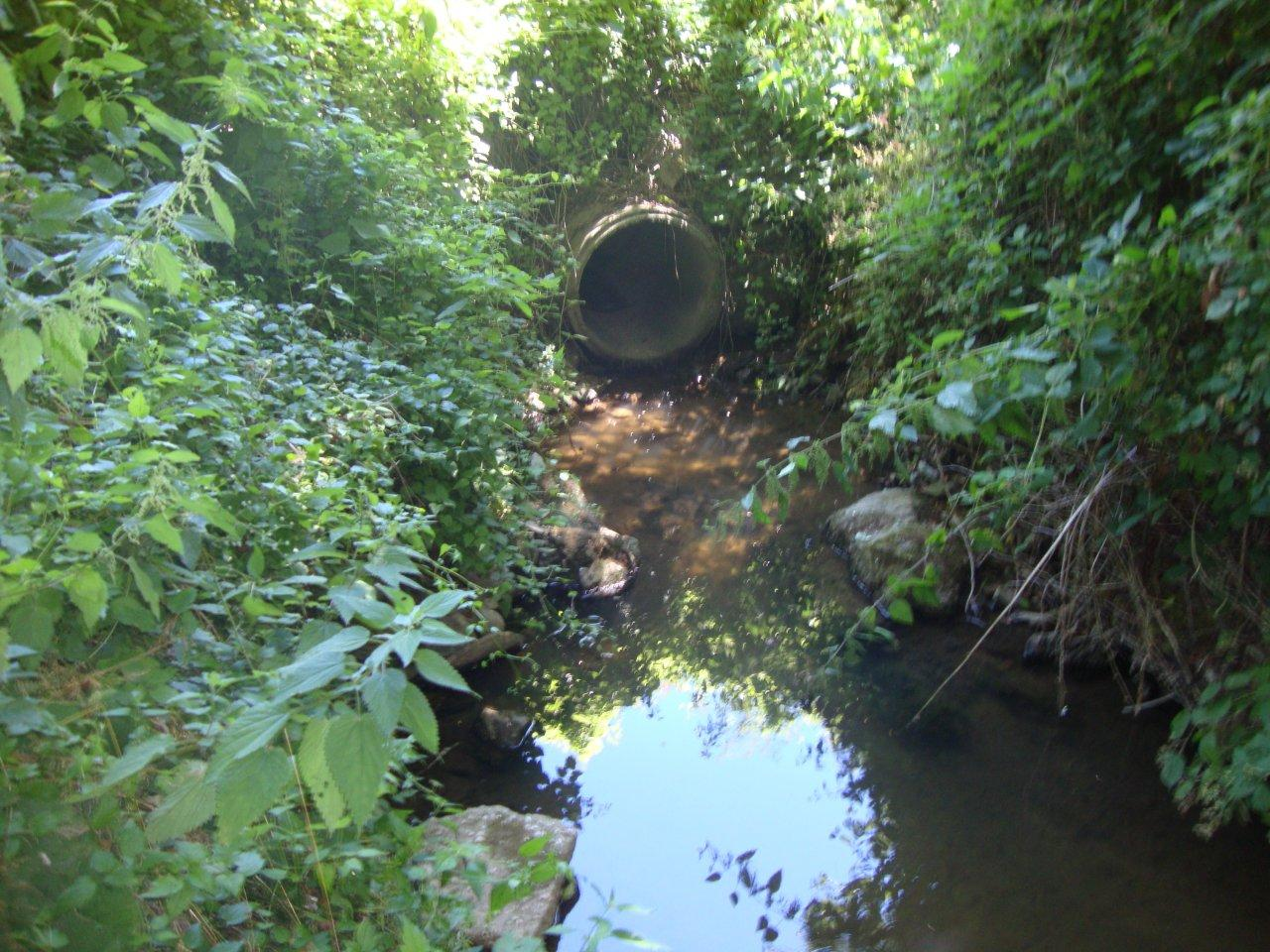 I liquami dei depuratori cosparsi sul terrenoSequestrati 4 impianti nel Cosentino, 2 indagati