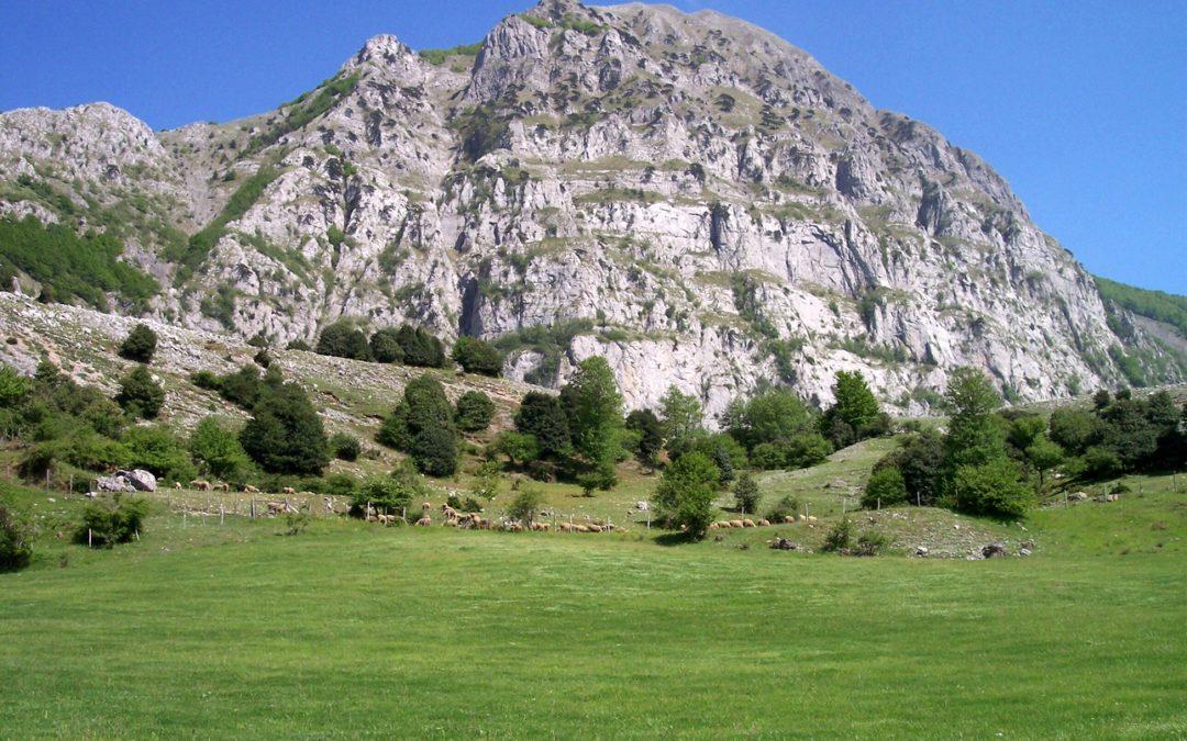 Coppia di turisti si perde nel Parco del Pollino, ritrovato dopo quattro ore