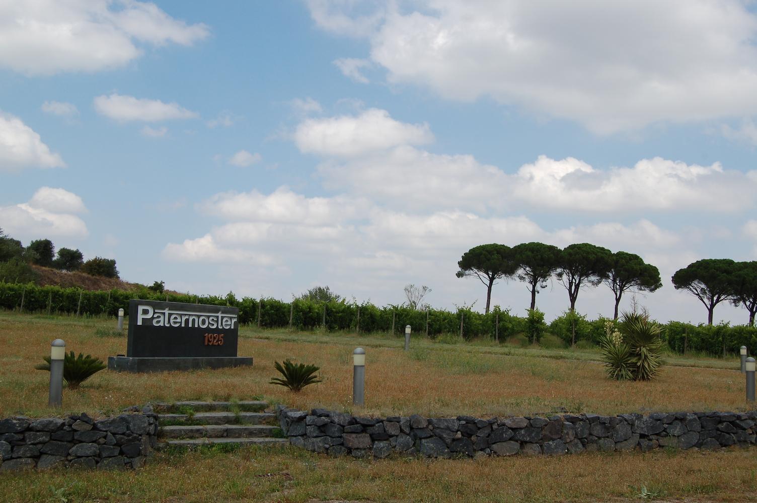Valpolicella-Aglianico, alleanza produttivo-commerciale tra due storiche famiglie del vino