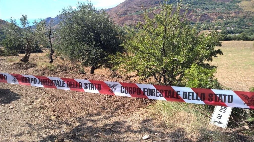 Stavano costruendo una strada abusiva, sequestrata area in provincia di Cosenza