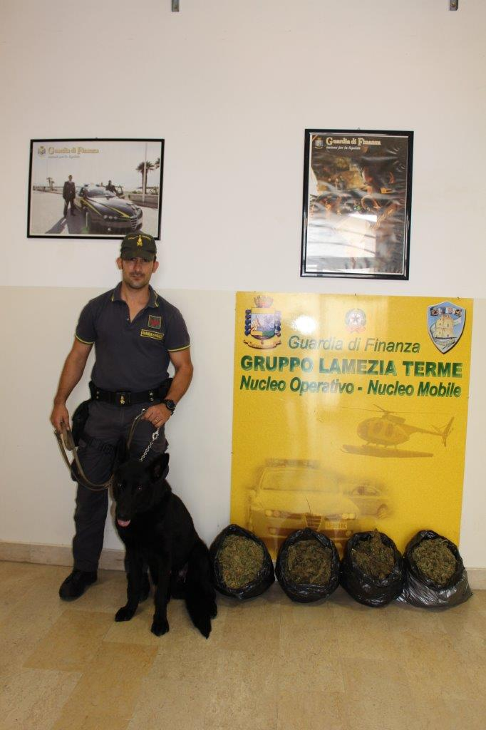 In auto a Lamezia con quattro chili di marijuanaCorriere crotonese arrestato durante un controllo