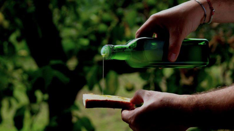 La Roggianella, eccellenza tipica calabrese, sbarca al Golosario lombardo: l'olio calabrese conquista il mercato