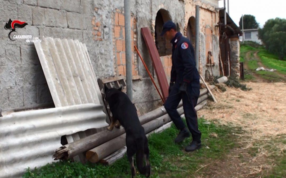 FOTO – Blitz contro il clan di 'ndrangheta dei Bonavota  Le foto delle perquisizioni e delle armi recuperate