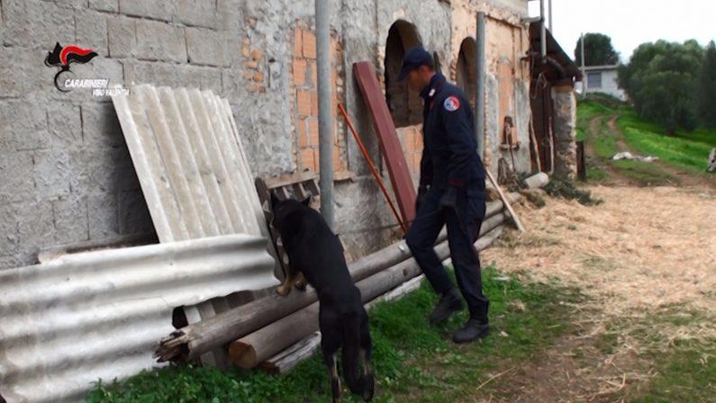 FOTO - Blitz contro il clan di 'ndrangheta dei BonavotaLe foto delle perquisizioni e delle armi recuperate