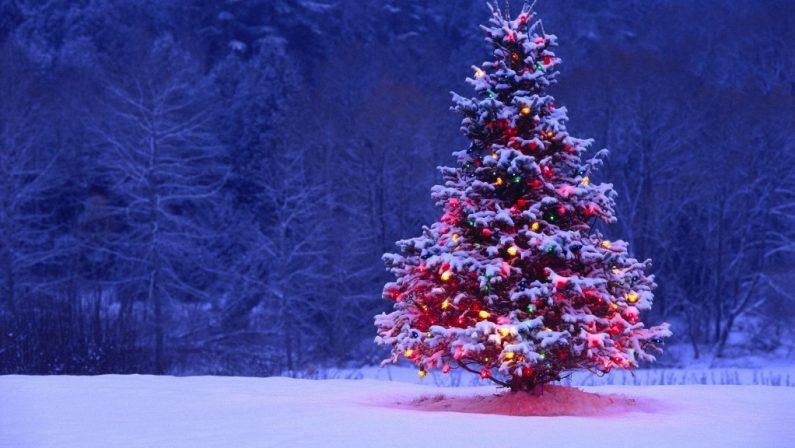 Meteo, piogge in Calabria anche di forte intensitàMa per Natale arrivano sole e temperature miti