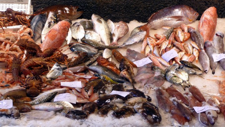 Sequestrati 160 kg di prodotti ittici a numerosi venditori ambulanti non autorizzati in diverse zone della Calabria
