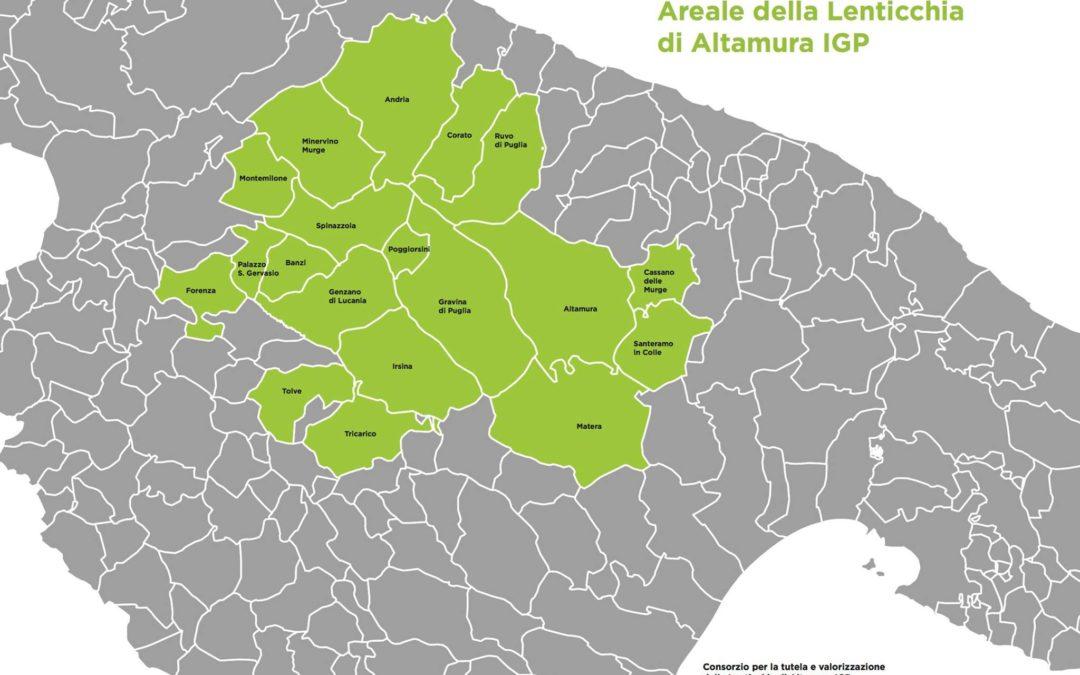 L'areale della lenticchia di Altamura Igp abbraccia anche Montemilone, Palazzo San Gervasio, Genzano di Lucania, Irsina, Tricarico, Matera, Banzi, Forenza e Tolve