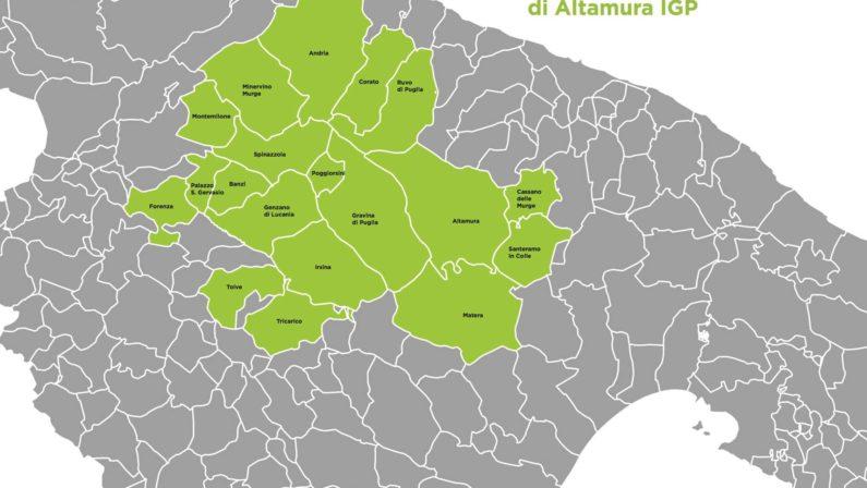 La lenticchia di Altamura Igp ora è un'eccellenza lucana: nel disciplinare anche 9 comuni della Basilicata