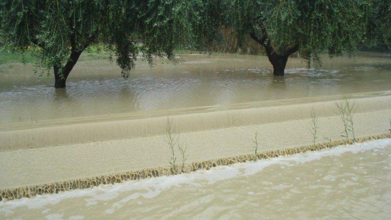 Tra bombe d'acqua, grandine e nubifragi il pazzo agosto che ha distrutto l'agricoltura lucana