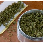 marijuana-essiccata.jpg