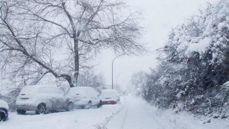 Neve da record, l'allarme delle associazioni di categoria: «Il maltempo mette le coltivazioni a rischio»