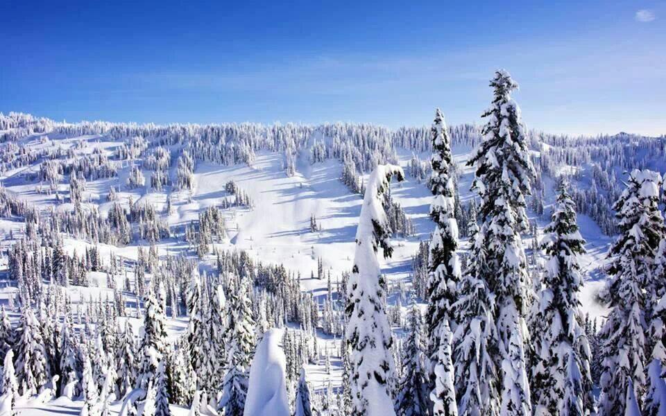 Turismo, il mese di dicembre chiude con un segno positivo nel cosentino