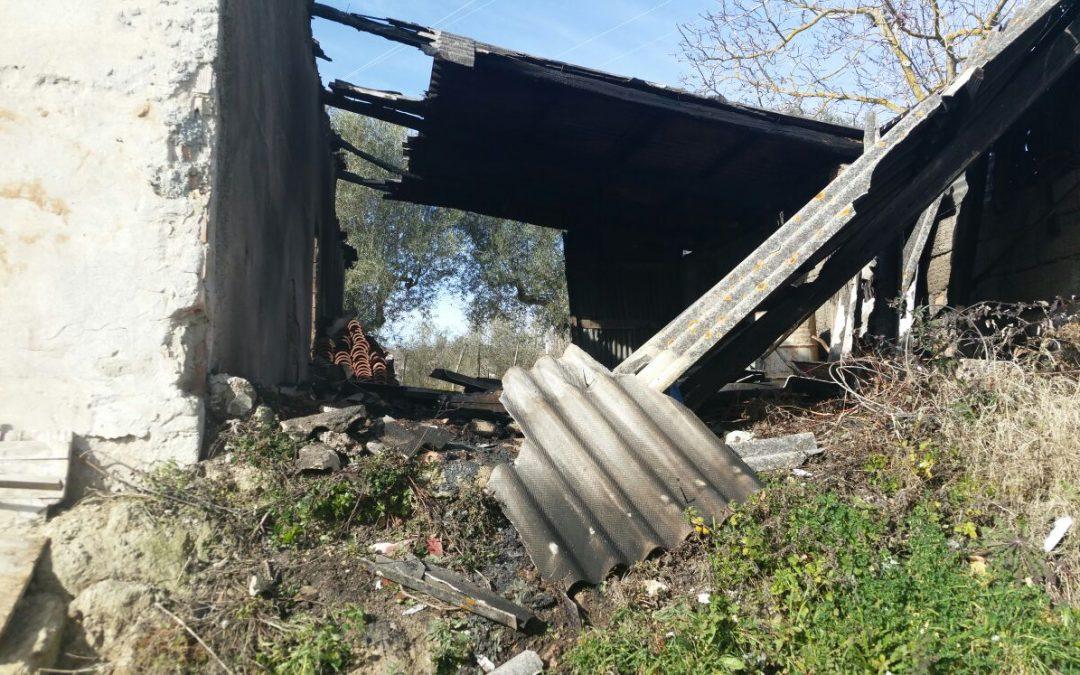 Prima gli distruggono le serre poi incendiano il deposito  Intimidazione ai danni di un imprenditore vibonese