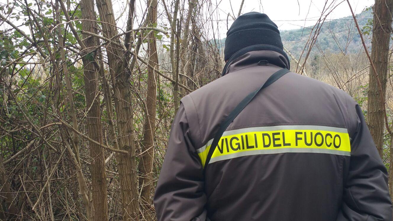Cade in un dirupo e muore mentre passeggia col figlio e il cane: tragedia in provincia di Reggio Calabria