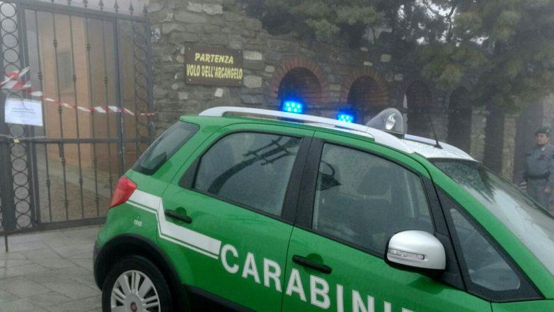 Ladri di mimose a Moschiano, in quattro nei guai