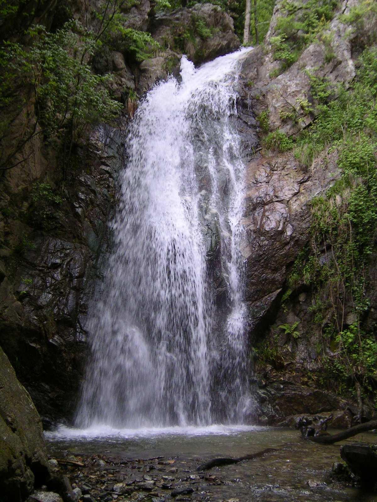 Valli Cupe Riserva naturale regionale della Calabria  La soddisfazione del Fonda Ambiente Italiano