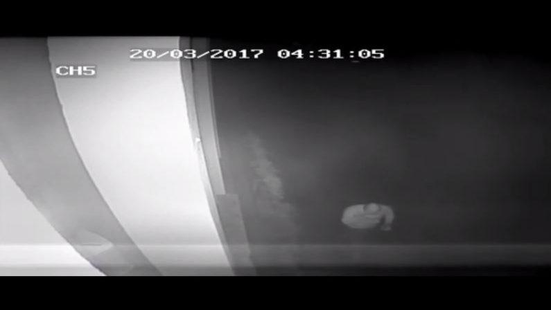 Scritte contro don Ciotti a Locri, autore in un video  Sindaco pubblica frame: «Wanted, c'è ricompensa»