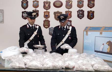 22mila dosi eroina e kobret in cantina a Napoli