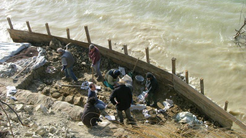 Approda in Parlamento il caso del fossile di balenottera dimenticato a Matera