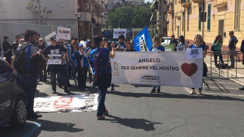 FOTO - Cane seviziato e ucciso nel CosentinoLa manifestazione davanti al tribunale di Paola