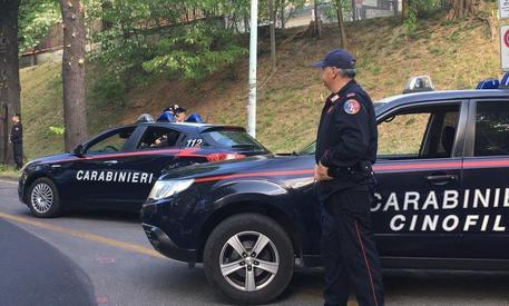 Napoli, sequestrati 13.5 kg di hashish: un arresto