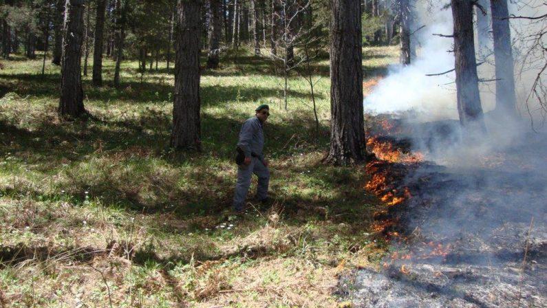 Forestali tagliati fuori nell'estate della grande siccità: protesta in Regione