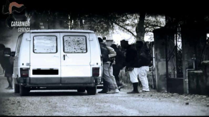 Migranti impiegati in lavori agricoli, quattordici arresti dei carabinieri a Cosenza
