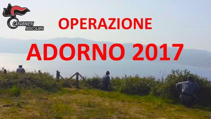 Operazione contro bracconaggio nell'area dello StrettoControlli a difesa di uccelli migratori e specie protette