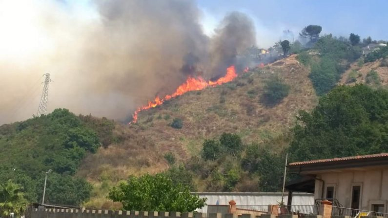 Tropea, vasto incendio in città a rischio la popolazioneIl sindaco: «Abbiamo allertato la Protezione Civile»