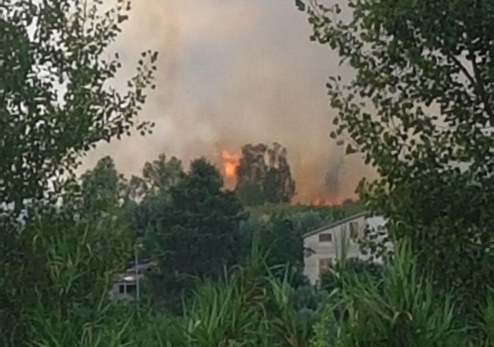 Incendio in una vasta area tra Castrolibero e Rende  Le fiamme hanno avvolto anche una discarica di rifiuti