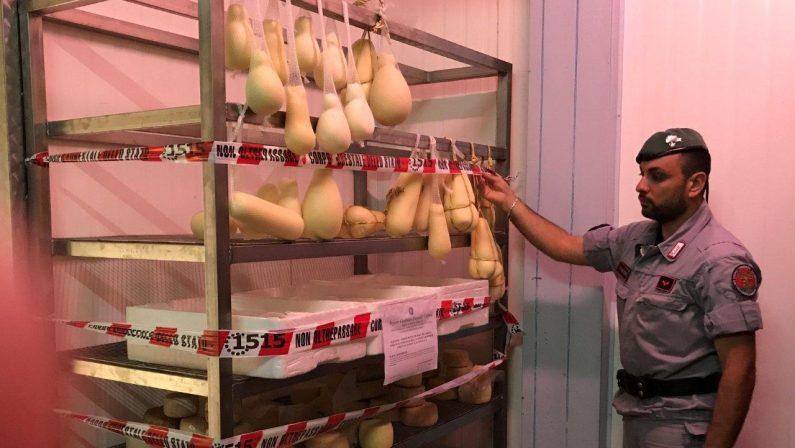 Alimenti in pessimo stato di conservazione, deferito un autotrasportatore nel Cosentino
